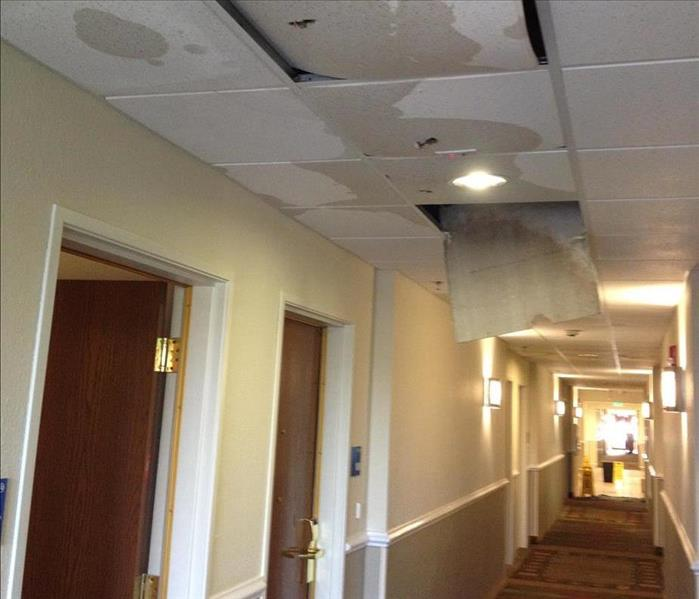 Hallway of a hotel with ceiling tiles wet and falling along with insulation and wet carpet
