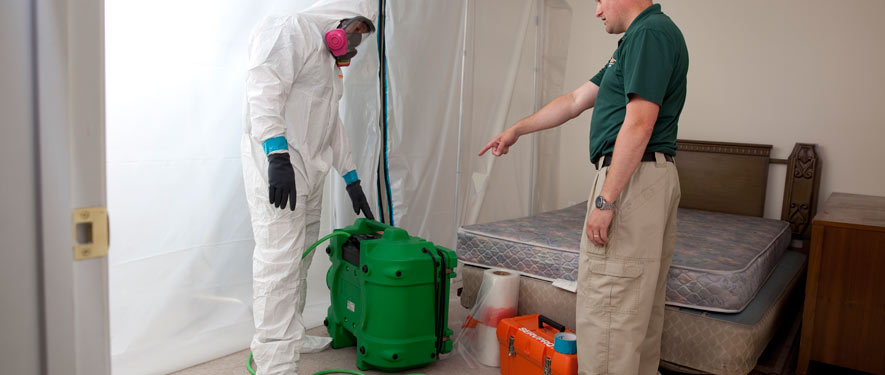 Middleburg, FL mold removal process